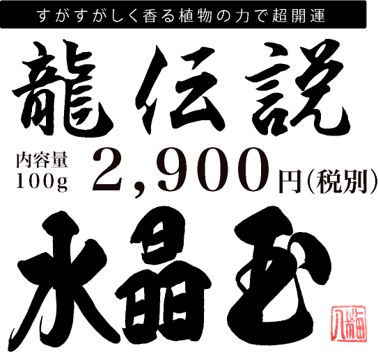 龍伝説2900円